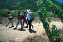 Buscan alternativas para cuidar la agricultura y así los trabajadores permanezcan en el campo