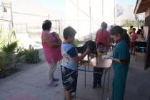 Continúa convenio entre Universidad del Mar y municipio de Vicuña para desparasitar mascotas