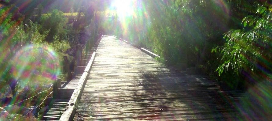 Puente  Negro de Rivadavia