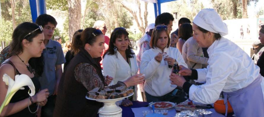 En el mes de julio mujeres elquinas realizarán la Primera Feria Costumbrista y Cultural de Vicuña