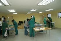 Con operación de perros y gatos incentivan  la tenencia y mantención responsable de mascotas