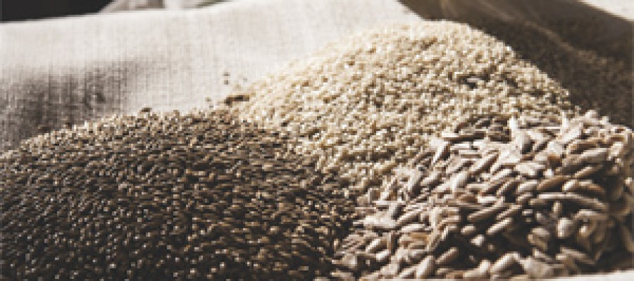 """El """"boom"""" de las semillas como ingredientes gourmet y alimentos preventivos para la salud"""