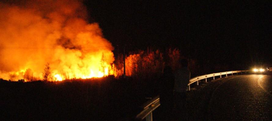 Largas horas trabajaron Bomberos para poder acabar con incendio de Bosque en Gualliguaica