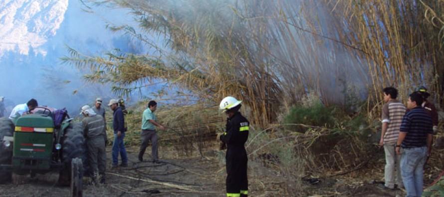 Incendio de proporciones provoca estragos en dos sectores de Paihuano