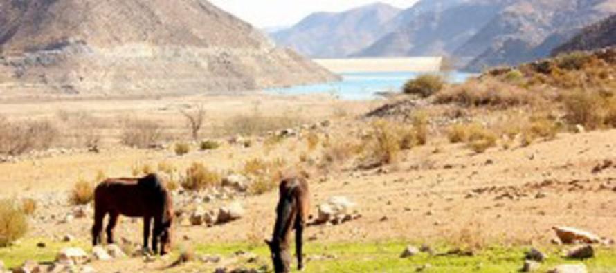 En Agosto informarán sobre disponibilidad hídrica para la próxima temporada de riego