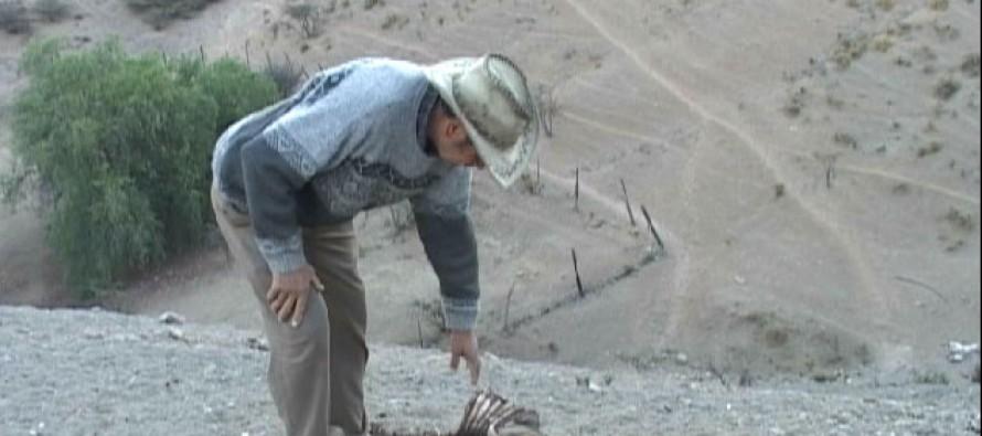 Aseguran que ayuda de Zona de Catástrofe llegará a las comunas del Valle de Elqui