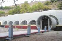 Banco Base de INIA cuenta en la actualidad con semillas recolectadas en el sur de Chile