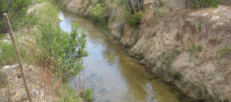 Estudio indica que sólo un 23% de aguas llegan al final de Canal San Pedro Nolasco
