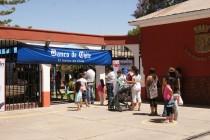 Teletón de Vicuña tendrá lugar este sábado en el frontis de la municipalidad