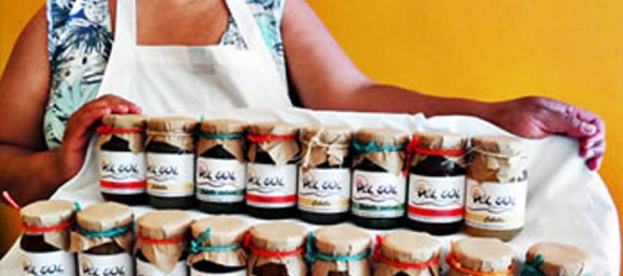 En Vicuña presentan innovadoras mermeladas elaboradas en cocinas solares