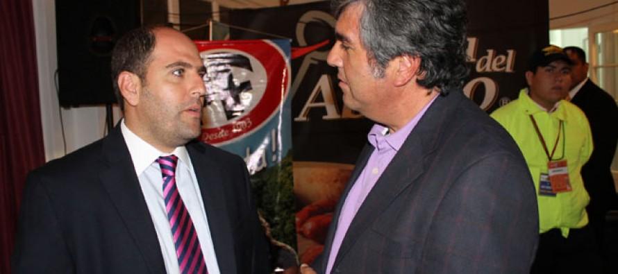 Proponen a Vicuña como destino de preparación de la Selección Chilena de Fútbol
