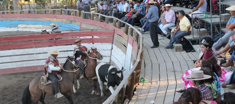 A la Asociación de Quillota se fue el primer lugar del Rodeo oficial de Vicuña