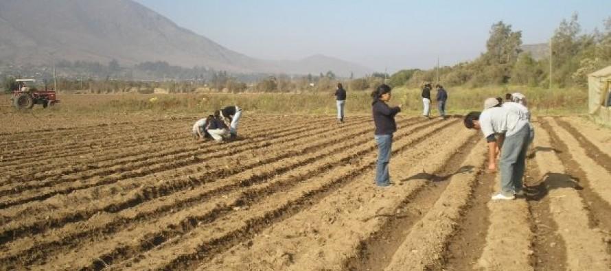 Capacitarán a vecinos de Vicuña a través de la Fundación Vida Rural de la PUC