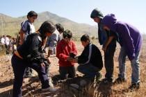 Buscan luchar contra la desertificación con plan de reforestación y brigadas contra incendios