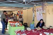Artesanos y productores de Elqui: un icono turístico de Vicuña