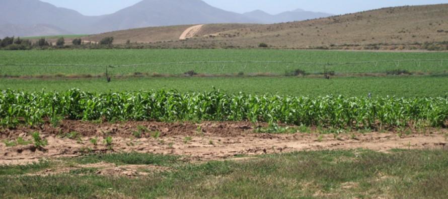 Adelantarán concursos de Ley de Riego para apoyar a regantes ante sequía