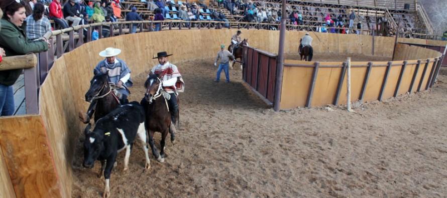 Rodeo de Horcón convocó a competidores de diversos puntos de la provincia de Elqui
