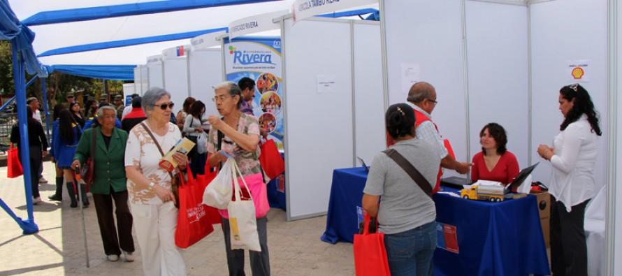 Más de 600 puestos de trabajos se generaron en la Feria Laboral realizada de Vicuña