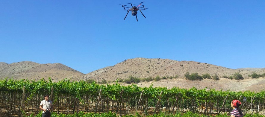 Bajo costo y abundancia en la producción es la meta que desean agricultores de uva de Vicuña y Paihuano