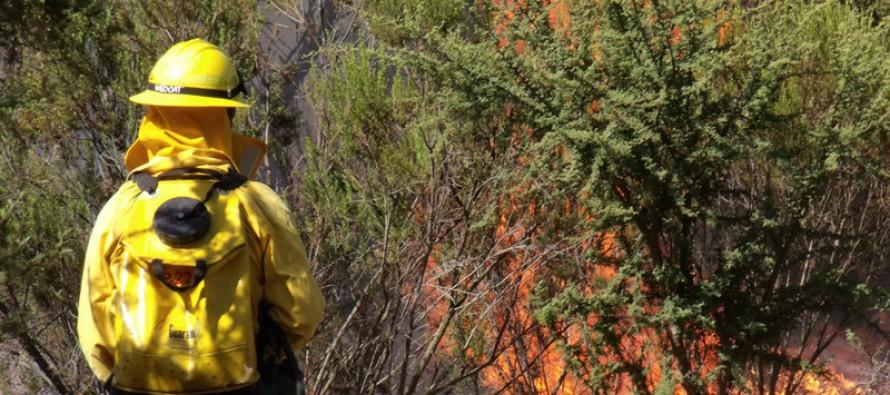 Llaman a prevenir incendios en temporada estival en la Región de Coquimbo