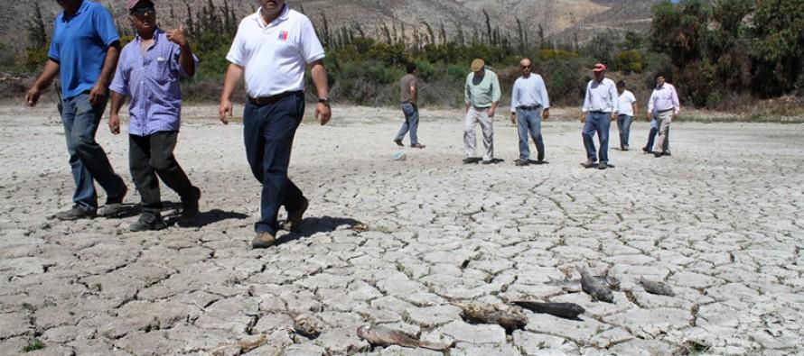 Vecinos de Punta Azul denuncian supuesto desvío de agua que afecta a agricultores de la zona