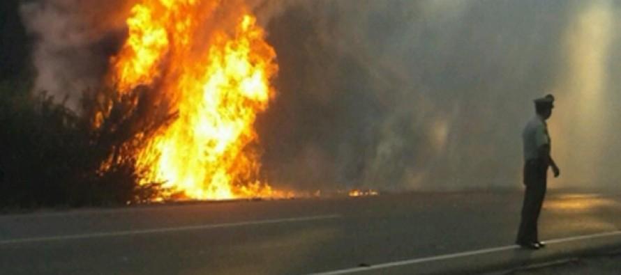 Pese a resientes incendios la zona presenta una disminución del 66% en las hectáreas quemadas
