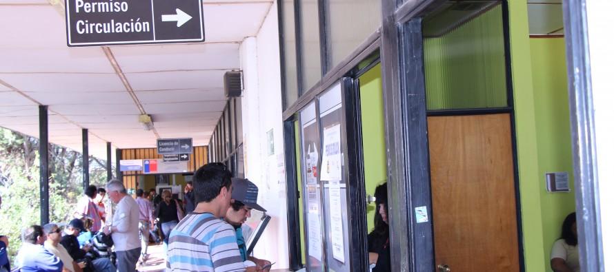 Extienden horarios para sacar el permiso de circulación 2014 en Municipalidad de Vicuña