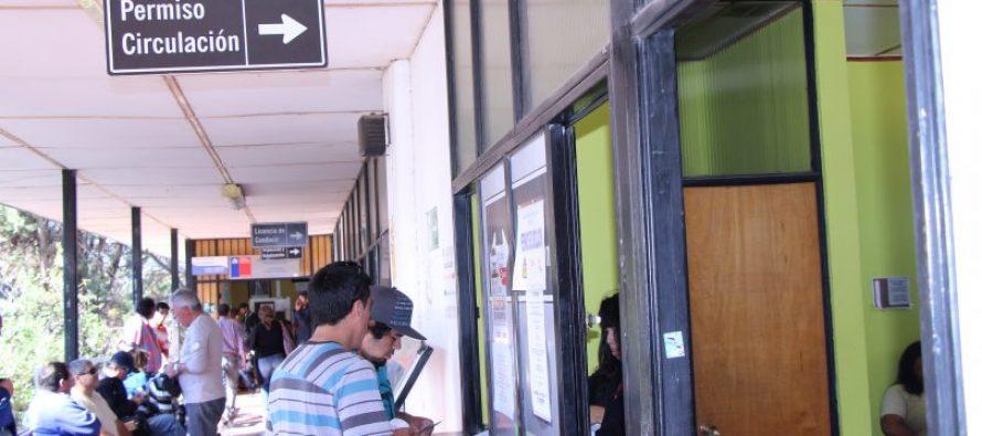 Incentivan a la comunidad elquina y a los turistas a sacar su permiso de circulación en Vicuña