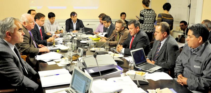 Productores de Pisco exponen radiografía  del sector y su oposición a alza tributaria