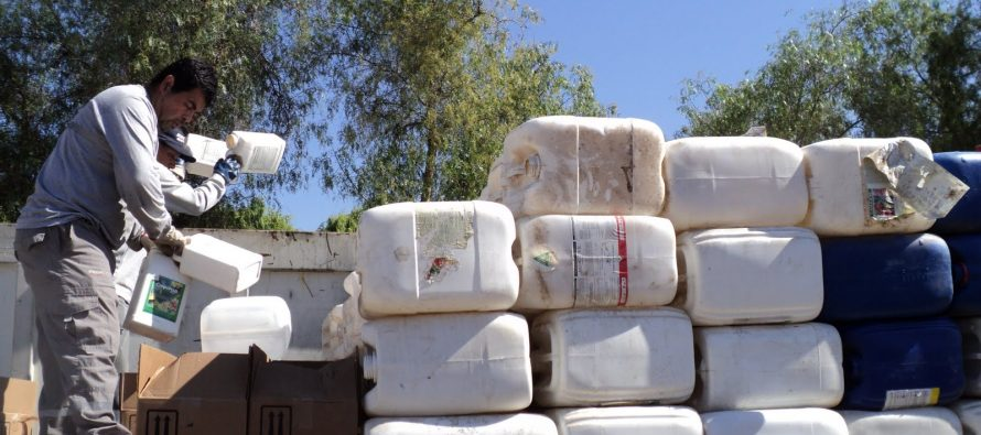 Destacan a Vicuña a nivel nacional por la exitosa recolección de envases fitosanitarios