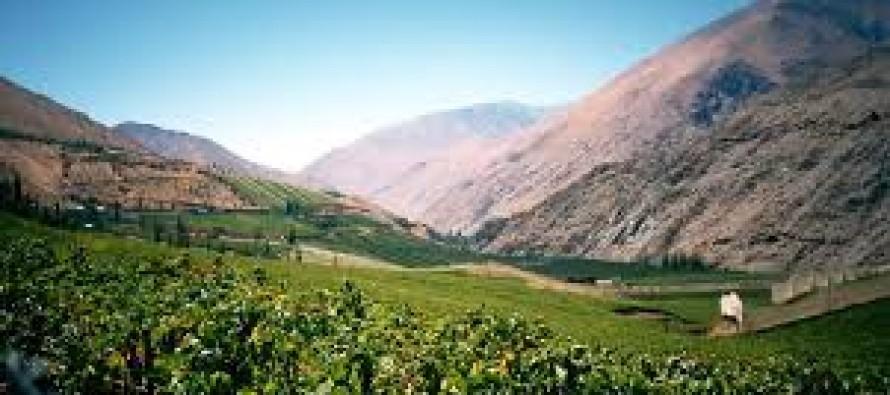Valle del Elqui: un oasis para los sentidos