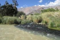 Nacimiento del Río Elqui