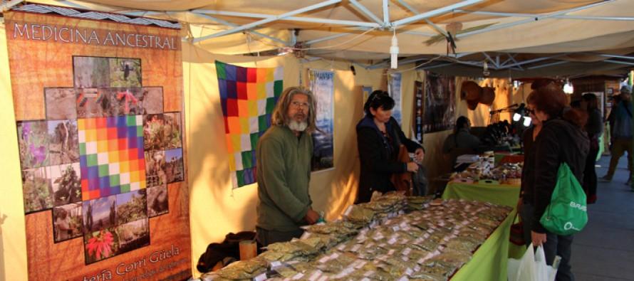 Ferias de artesanos de Vicuña continúan siendo uno de los atractivos turísticos del Valle del Elqui