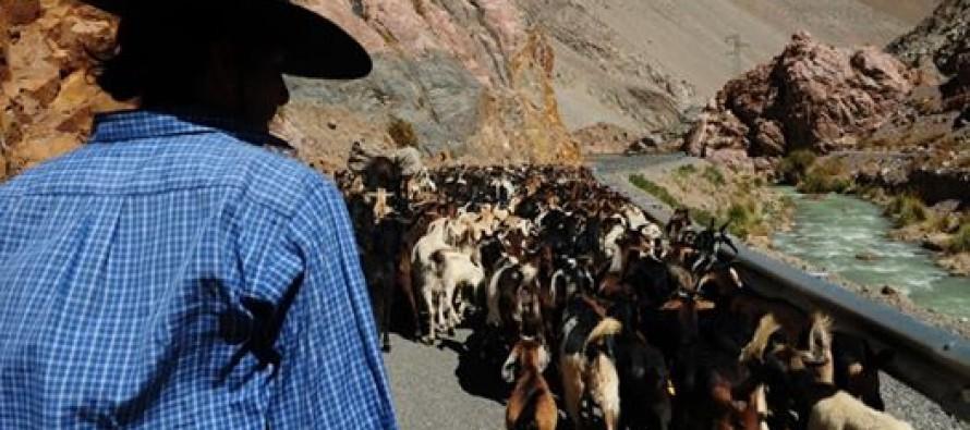 Reivindican trabajo de campesinos  y sus  dirigentes  en su Día Nacional