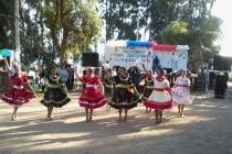 Festival Folclórico 2014 busca rescatar las tradiciones y atractivos de Altovalsol