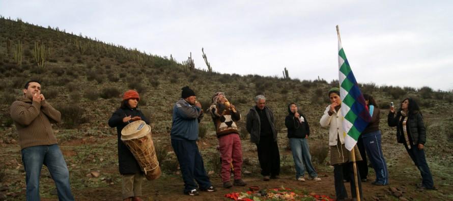Vicuña será parte de un taller de investigación sobre pueblos originarios