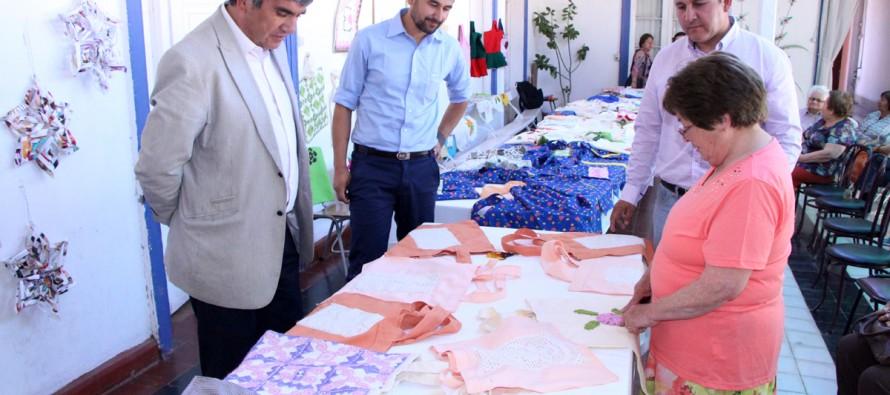 Extienden plazo de difusión de ordenanza que elimina el uso de bolsas plásticas en Vicuña