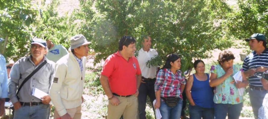 Continúan capacitaciones de programa PRODESAL para agricultores de Paihuano