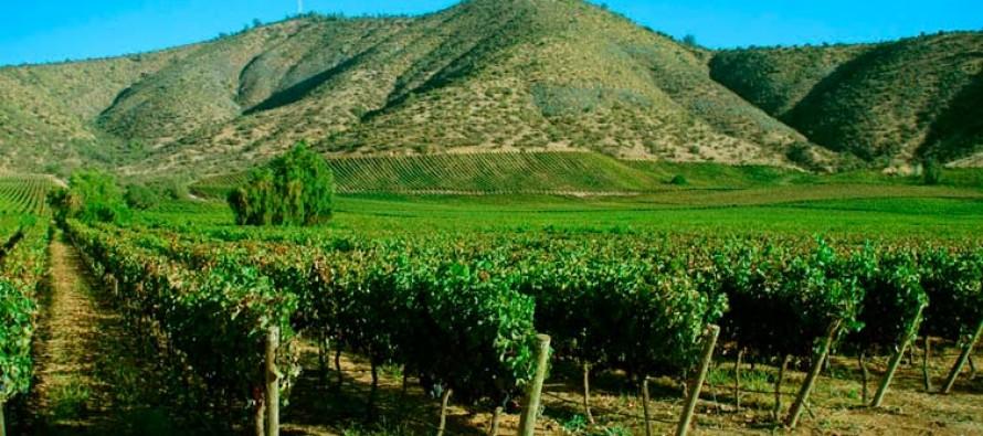 """Presidenta de la SAN llama al sector agrícola a """"estar más unido que nunca"""""""