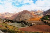 Valle del Elqui es escogido como uno de los paisajes con viñedos más hermosos del mundo