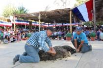 Con apertura de módulos Paihuano inicia trigésima séptima feria costumbrista