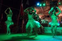 Miles de asistentes visitaron la XVII feria Costumbrista en Paihuano