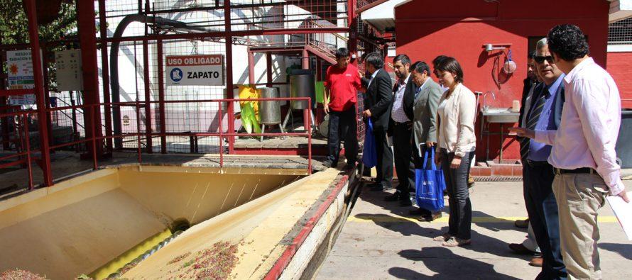 Lanzan campaña para trabajadores del sector agrícola en el Valle de Elqui