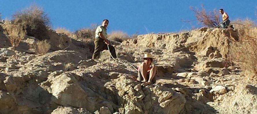Carabineros y vecinos de Paihuano rescatan a turista israelí en cerro de Chañar Blanco