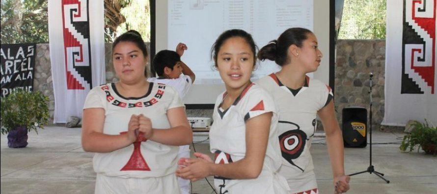 Valoran idea de crear oficina de asuntos indígenas en la comuna de Vicuña
