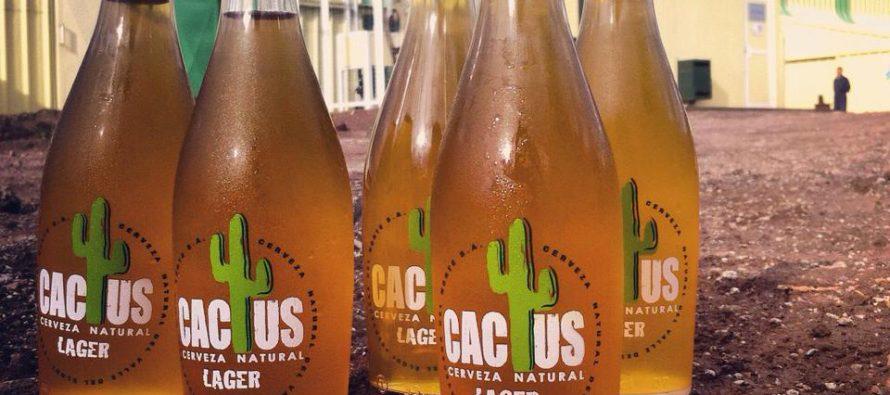 """Como una cerveza natural del Valle del Elqui """"Cactus"""" se lanza al mercado premium"""