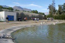 Vecinos de población Juan Pablo II felices con aprobacion ambiental de nueva planta sanitaria