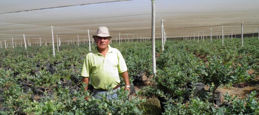 Nodo de Reconversión de Sociedad Agrícola del Norte proyecta nuevas actividades