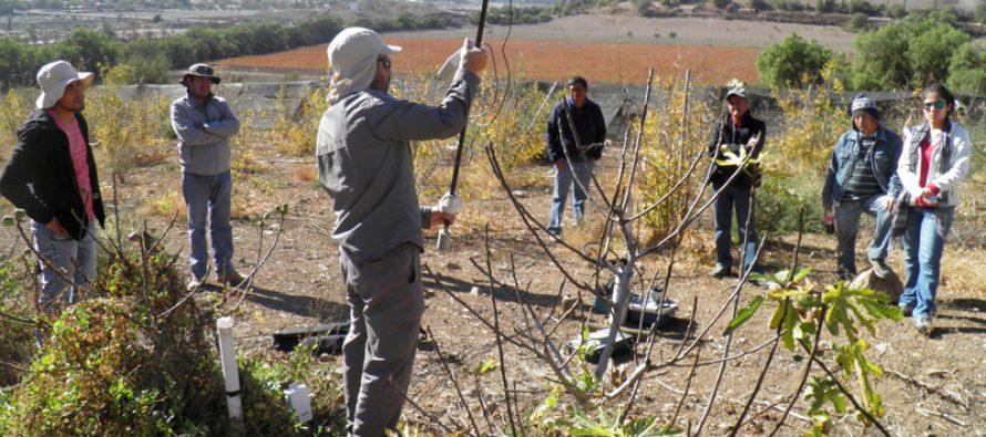 SAN y CORFO capacitan agricultores en medición de necesidades de riego y sistemas de monitoreo