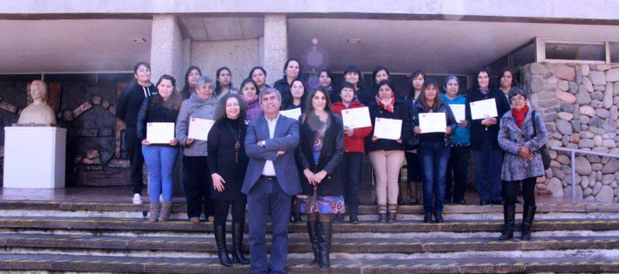 Mujeres de Vicuña finalizan con éxito  programa apoyo a la dinámica familiar